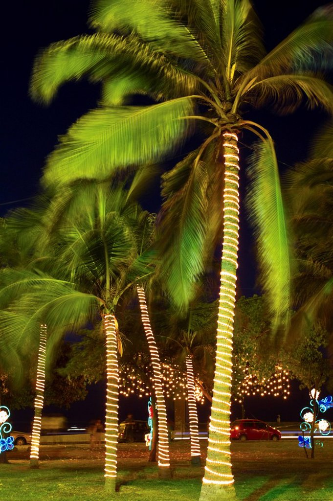 Stock Photo: 1609-34641 Colombia, Bolivar, Cartagena De Indias, Parque de la Marina, Christmas lights
