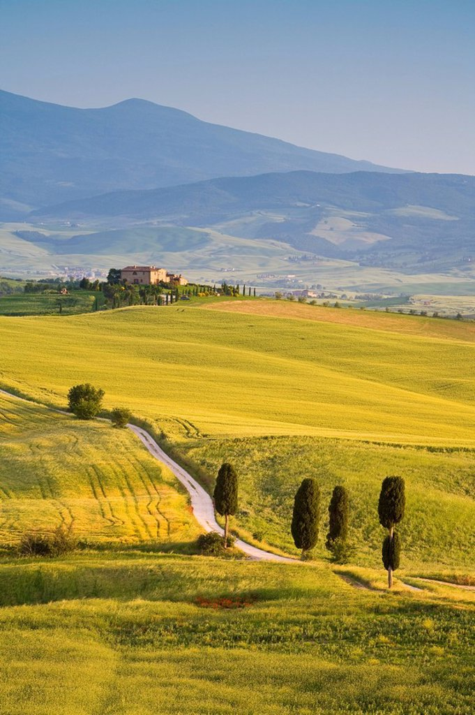 Stock Photo: 1609-38189 Farmhouse, Val d´ Orcia, Tuscany, Italy