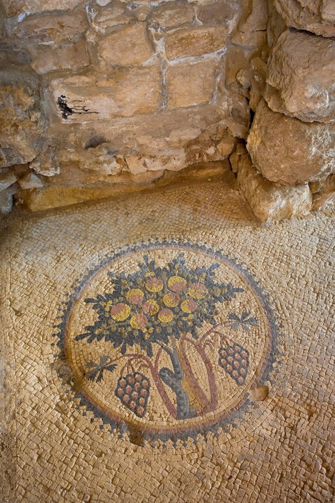 Hippolytus Hall 6th century Byzantine Villa, Archaeological Park, Madaba, Jordan : Stock Photo