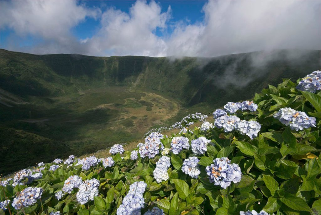 Stock Photo: 1609-39645 Volcanic crater, Reserva Natural da Caldeira do Faial, Faial Island, Azores, Portugal