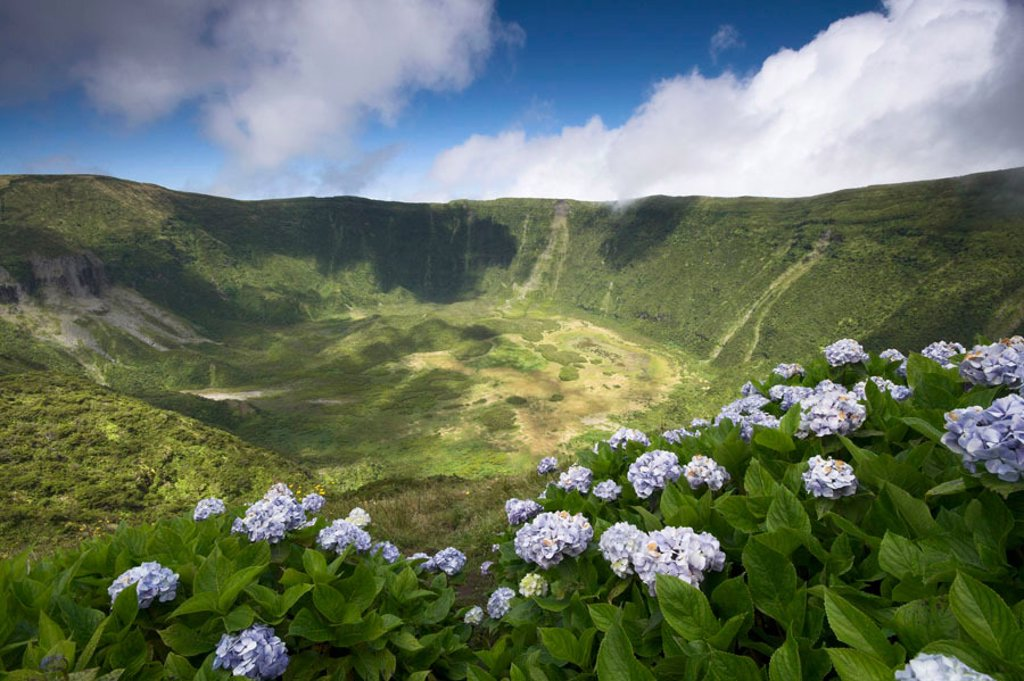 Volcanic crater, Reserva Natural da Caldeira do Faial, Faial Island, Azores, Portugal : Stock Photo