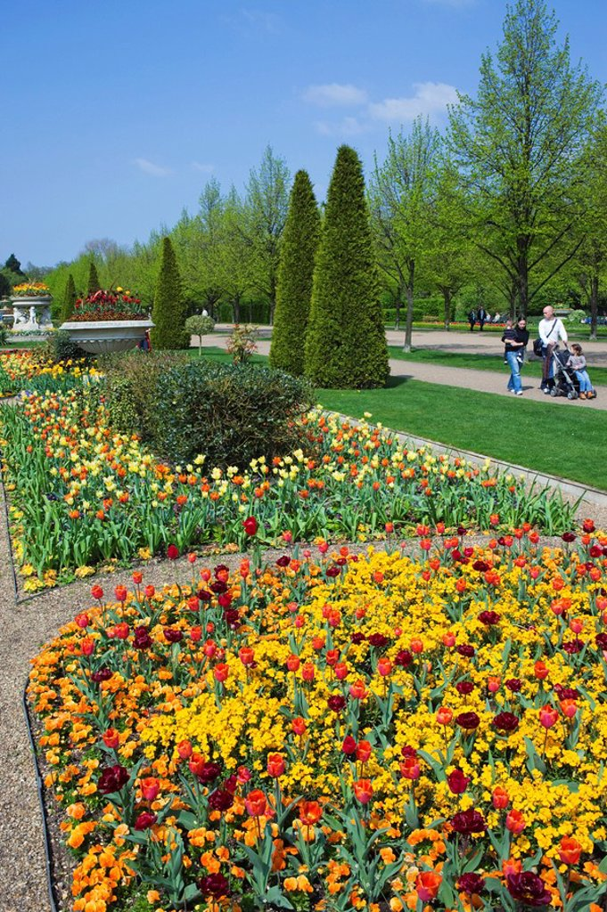 Stock Photo: 1609-41548 England, London, Regents Park, Avenue Gardens, Flower Display