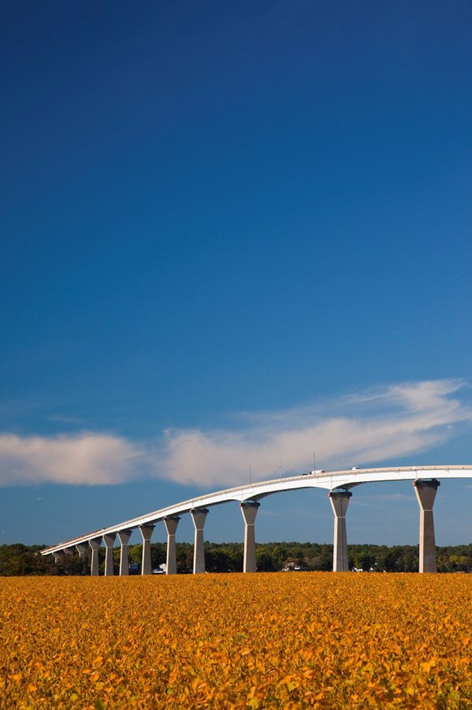Stock Photo: 1609-45169 USA, Maryland, Western Shore of Chesapeake Bay, Solomons, Patuxent River Bridge