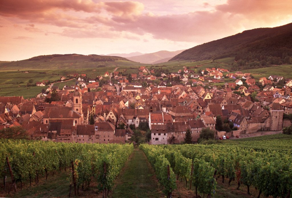 Stock Photo: 1609-4519 Riquewihr, Alsace, France