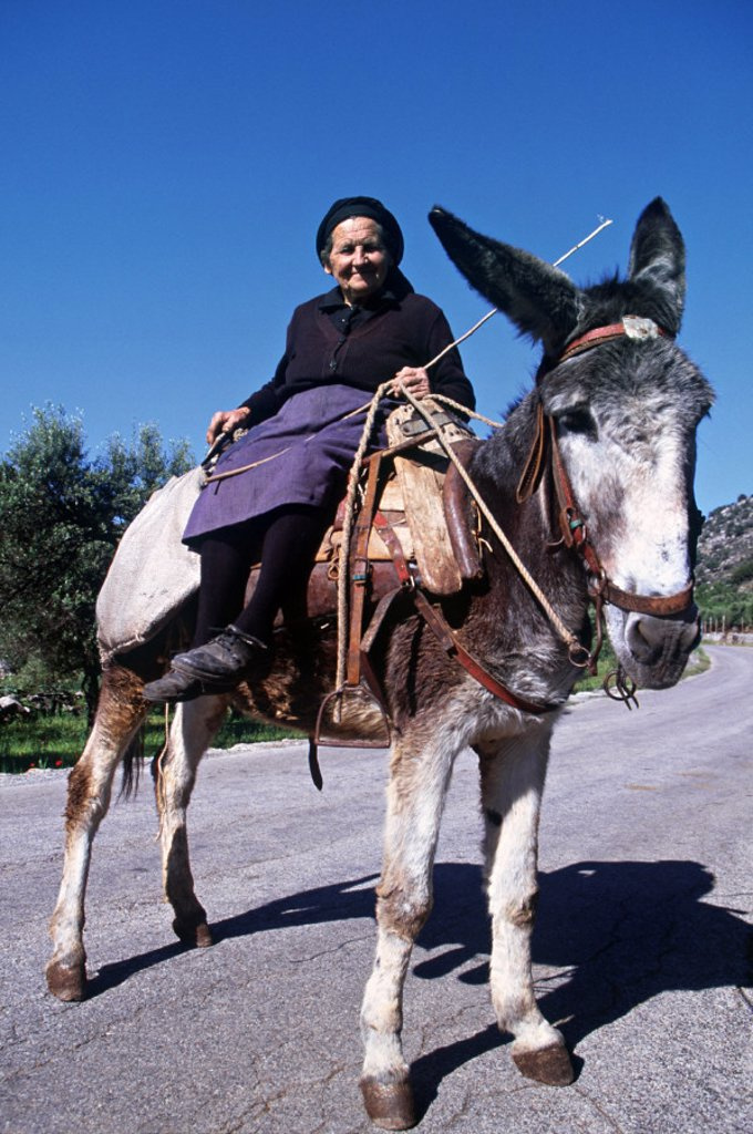 Stock Photo: 1609-4992 Woman on Donkey, Lasithi Plateau, Lasithi Province, Crete, Greece