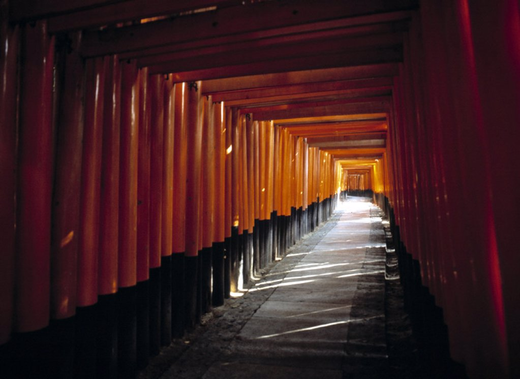 Stock Photo: 1609-7298 4 km Tunnel of Torii, Kyoto, Japan