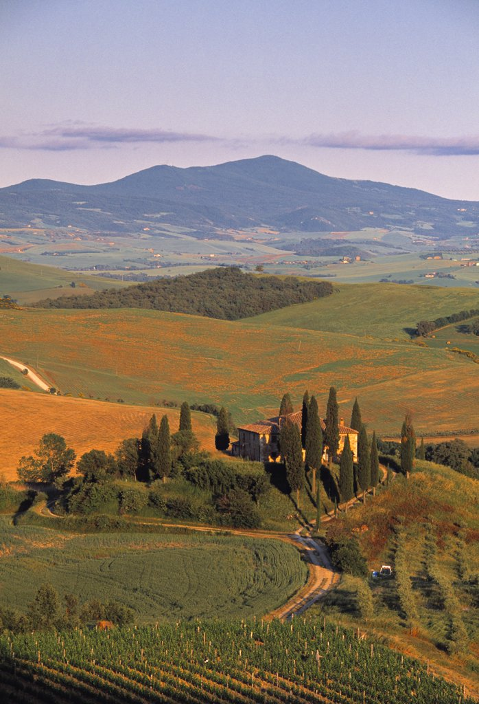 Stock Photo: 1609R-30268 Val D' Orcia, Tuscany, Italy
