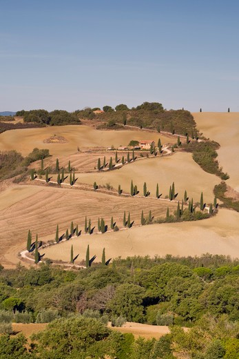 Stock Photo: 1609R-30359 La Foce, Pienza Area, Tuscany, Italy