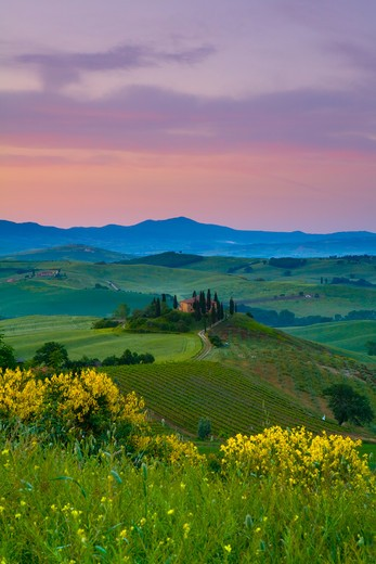 Stock Photo: 1609R-30375 Farmhouse, Val d' Orcia, Tuscany, Italy, RF
