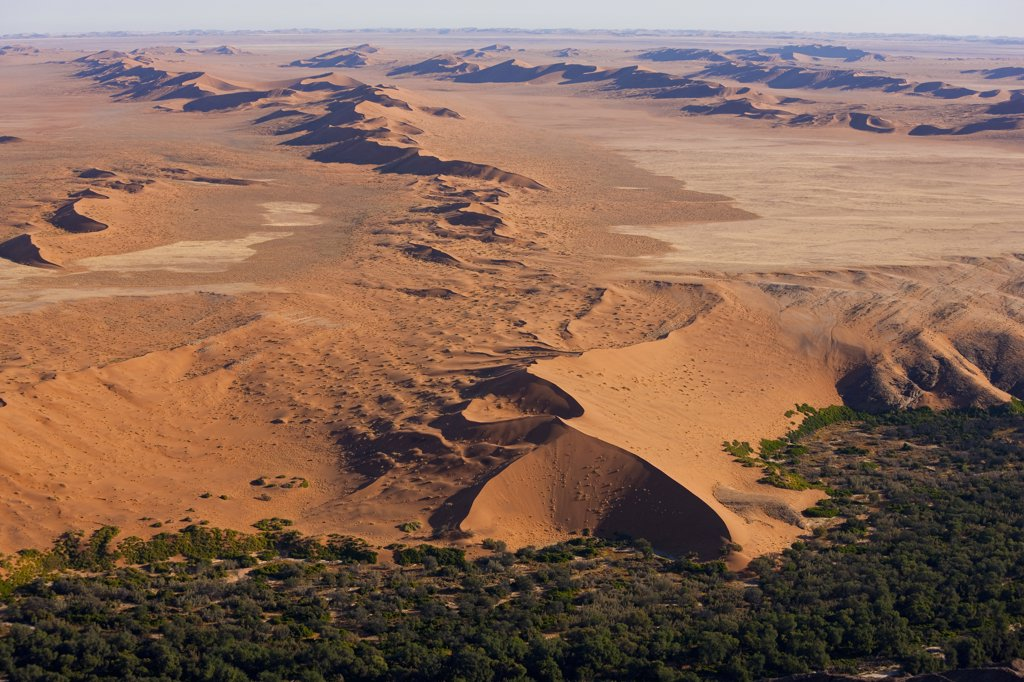 Desert meets green fertile land, Namib Desert, Namibia aerial view : Stock Photo