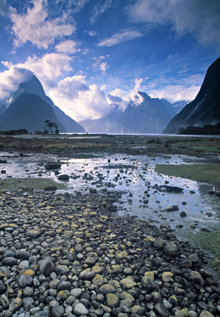 Milford Sound, Fjordland, South Island, New Zealand : Stock Photo