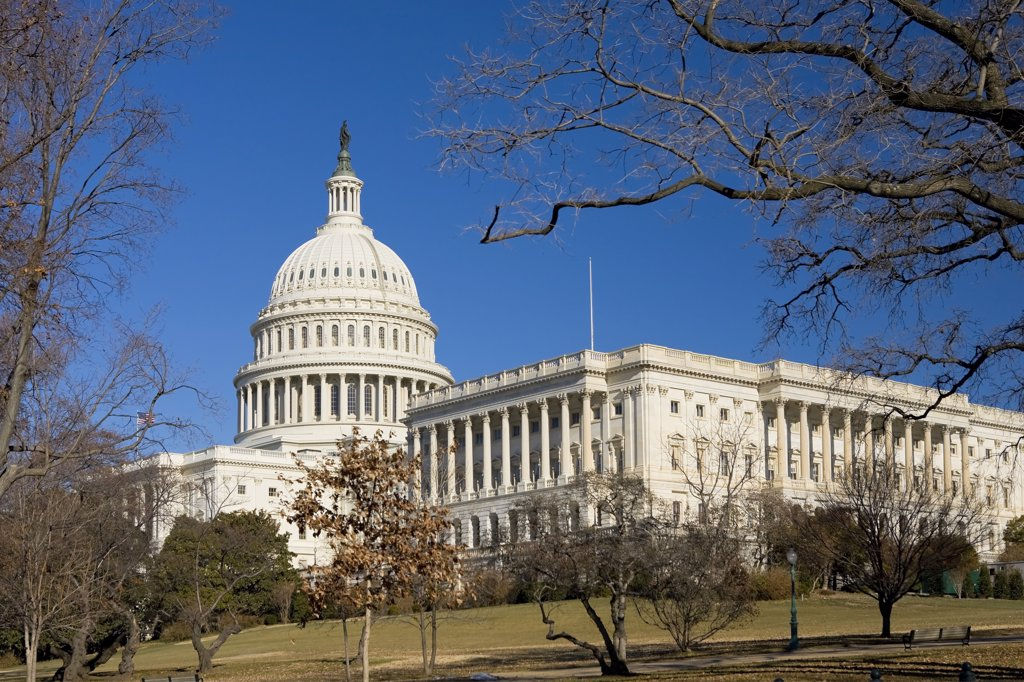 Stock Photo: 1609R-32263 The Capitol, Washington DC, USA