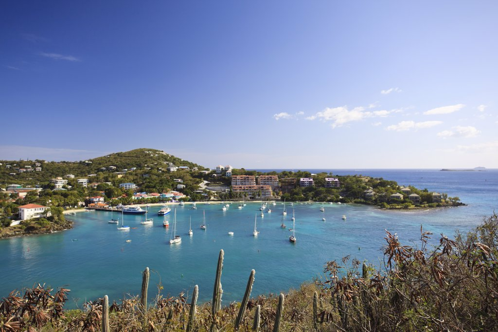 Stock Photo: 1609R-32772 Caribbean, US Virgin Islands, St. John, Virgin Islands National Park, Lind Point trail, Cruz Bay