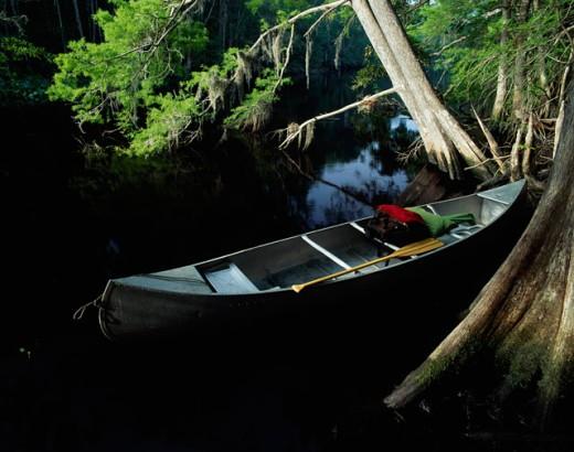 Canoe moored in a river, Ocklawaha River, Florida, USA : Stock Photo