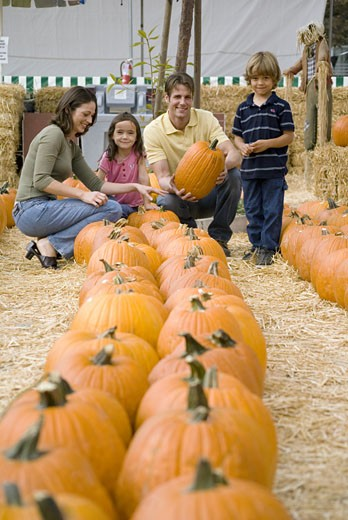 Family with pumpkins : Stock Photo