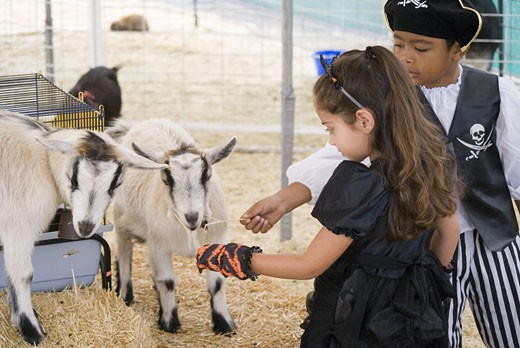 Stock Photo: 1624R-5747 Dressed up kids at petting zoo