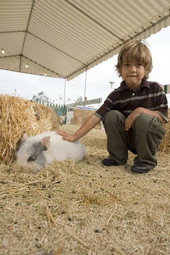 Stock Photo: 1624R-5754 Young boy with pig