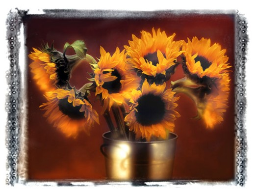 Sunflowers in a Metal Vase : Stock Photo