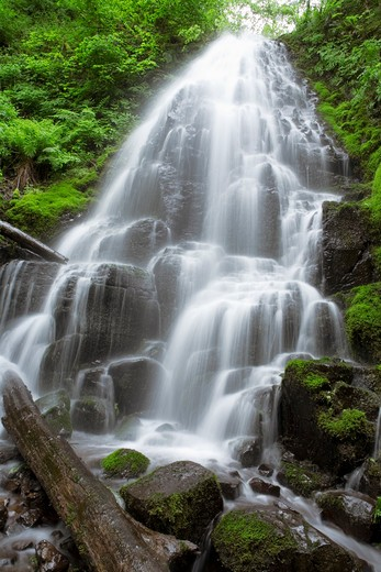 Blurred motion shot of remote waterfall splashing in forest : Stock Photo