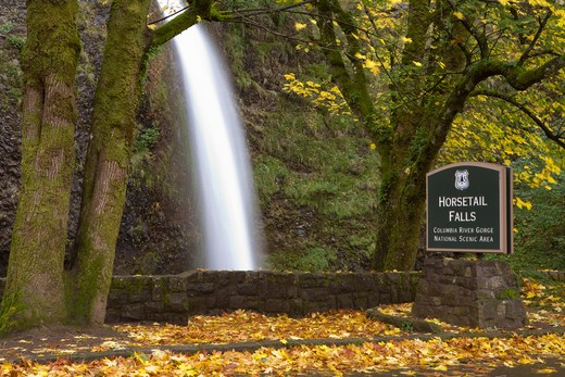 Blurred motion shot of waterfall in autumn at Horsetail Falls : Stock Photo
