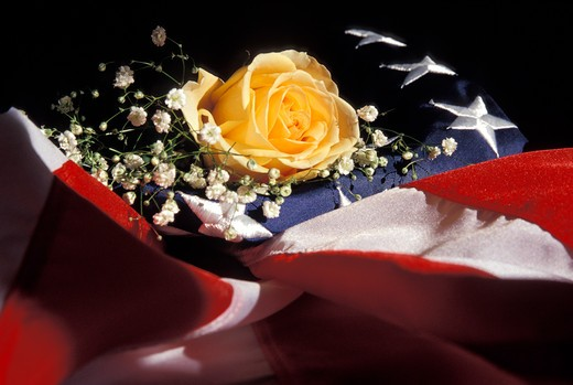 Stock Photo: 1626R-13232 Yellow Rose on American Flag