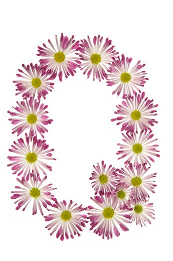Stock Photo: 1626R-15515 A Q Made Of Pink And White Daisies