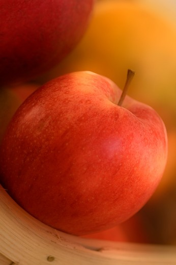 An Apple In The Pantry : Stock Photo