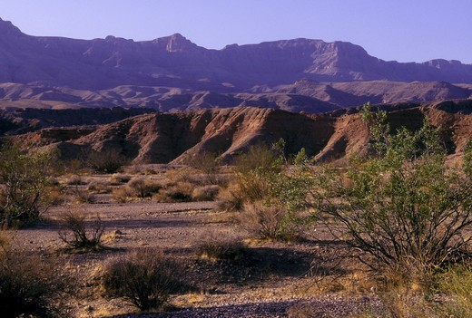 Stock Photo: 1626R-16637 Landscape at Lake Mead National Recreation Area