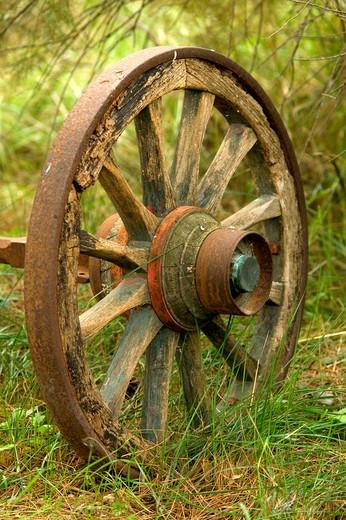 Rusty Wagon Wheel in Grass : Stock Photo