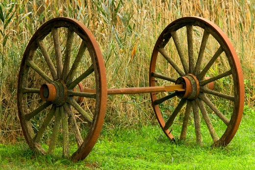 Stock Photo: 1626R-17366 Rusty Wagon Wheels in Grass