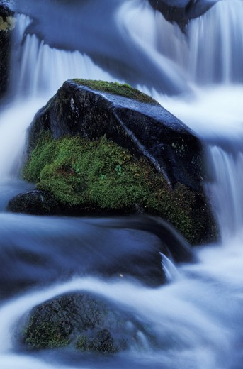Stock Photo: 1626R-18593 Mossy Rocks, Misty Water