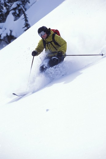 Stock Photo: 1626R-20633 Skier on Powdery Slope