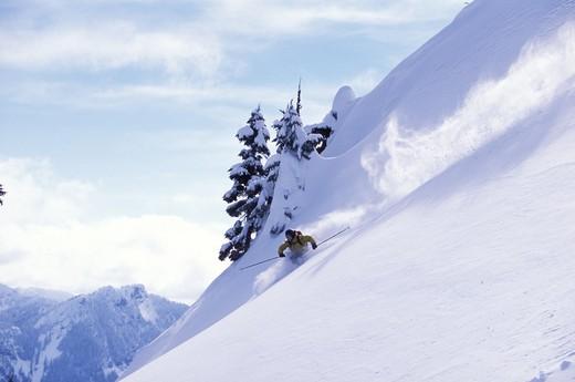 Skier Descending Slope : Stock Photo
