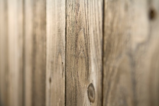 Detail of Rustic Wood Paneling with Knot Holes : Stock Photo