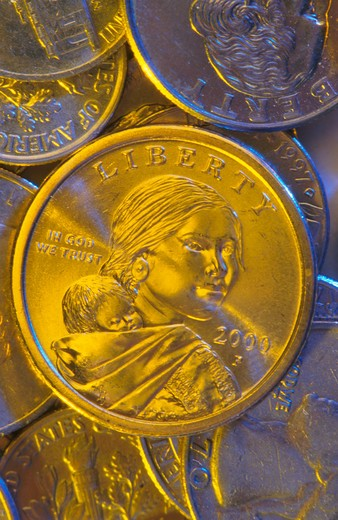 Sacagawea Dollar : Stock Photo