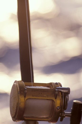 Fishing Rod : Stock Photo