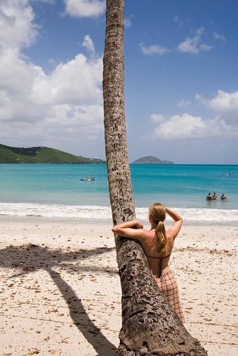 Woman Leaning on Palm Tree at Magens Bay : Stock Photo