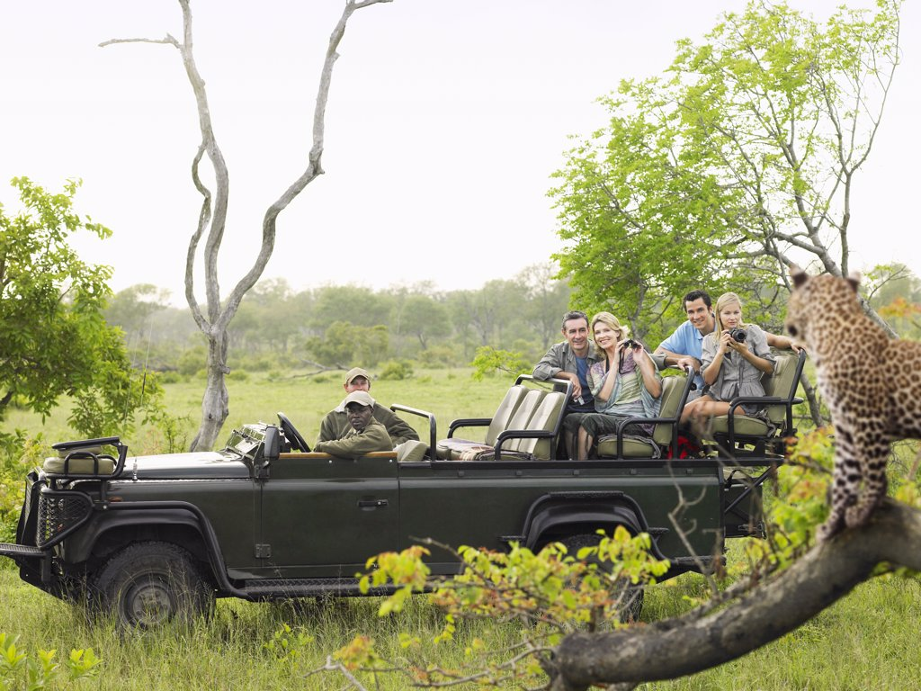 People on a Safari Vacation Watching Wildlife : Stock Photo