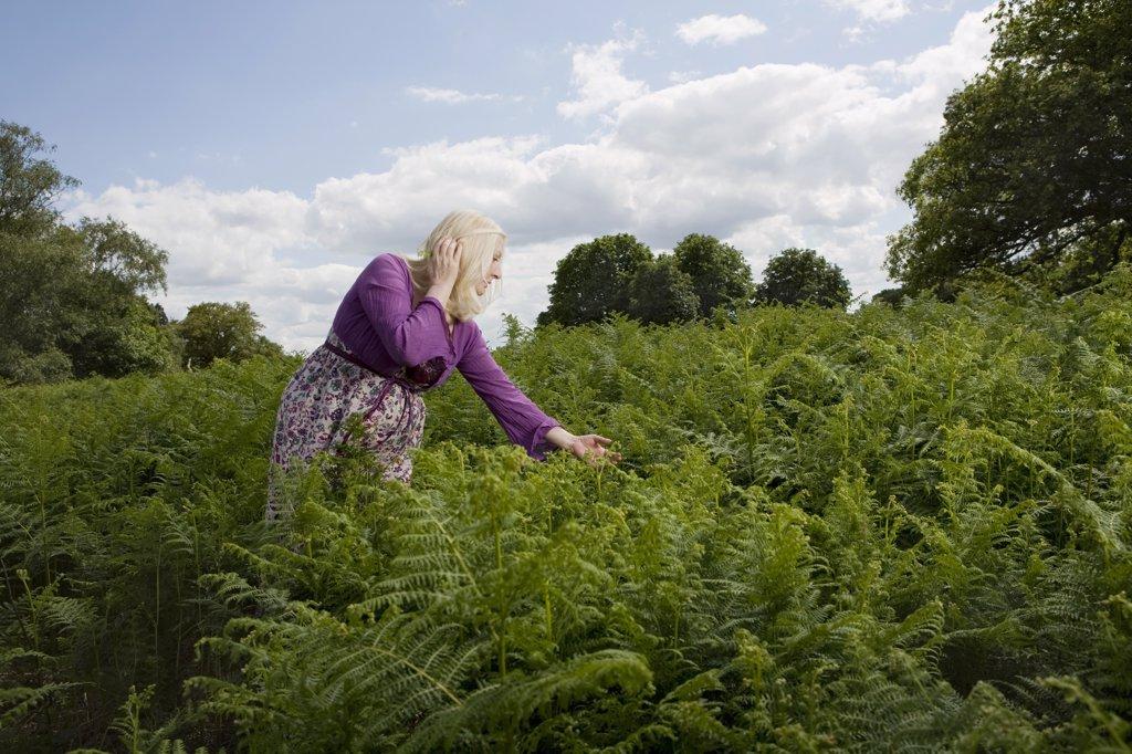 Woman Walking in a Meadow of Ferns : Stock Photo