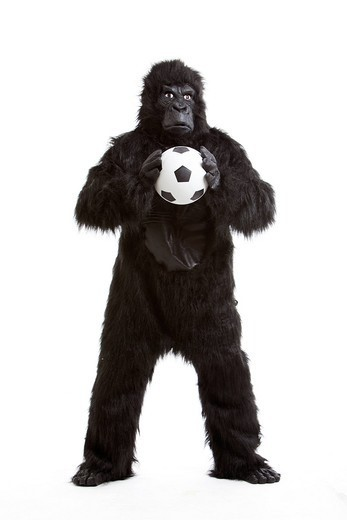 Studio. Young man in gorilla costume holding soccer ball against white background : Stock Photo