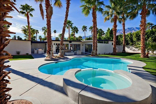 Residential pool with palm trees : Stock Photo