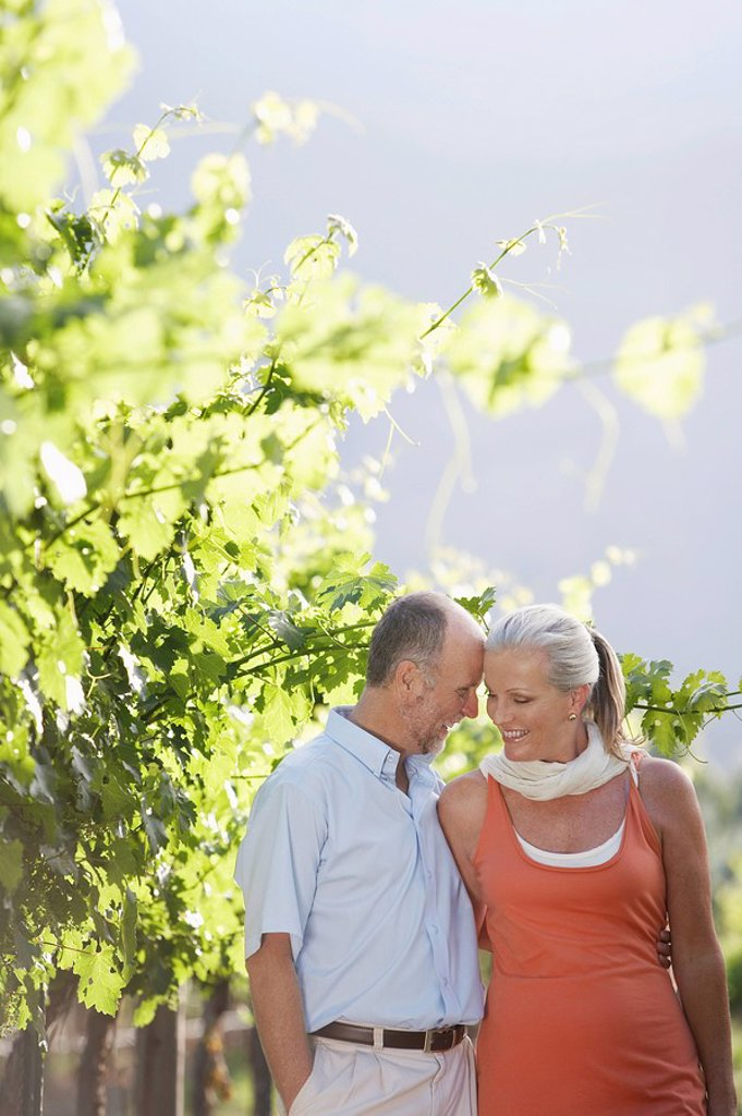 Stock Photo: 1654R-11732 Portrait of mature couple at the vineyard