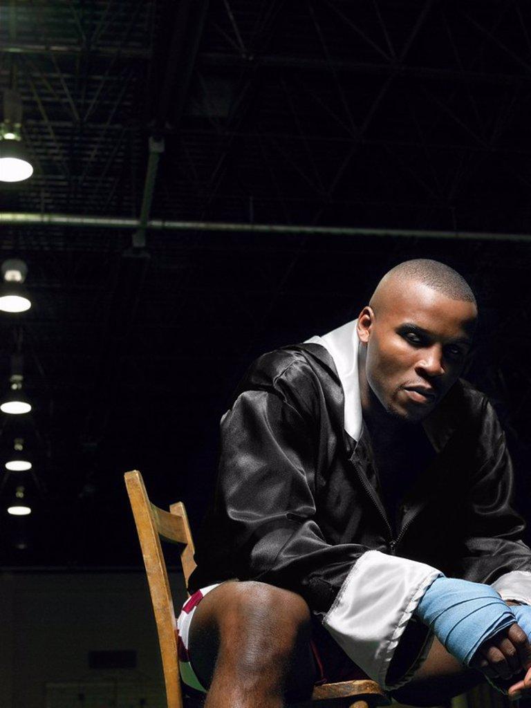 Stock Photo: 1654R-13950 Boxer sitting on chair portrait