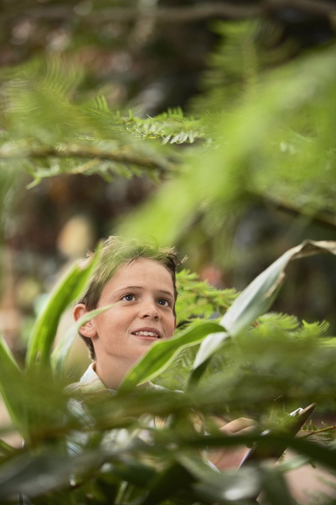 Stock Photo: 1654R-14227 Boy in Forest