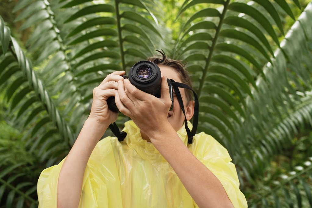 Boy Taking Photos in Forest : Stock Photo
