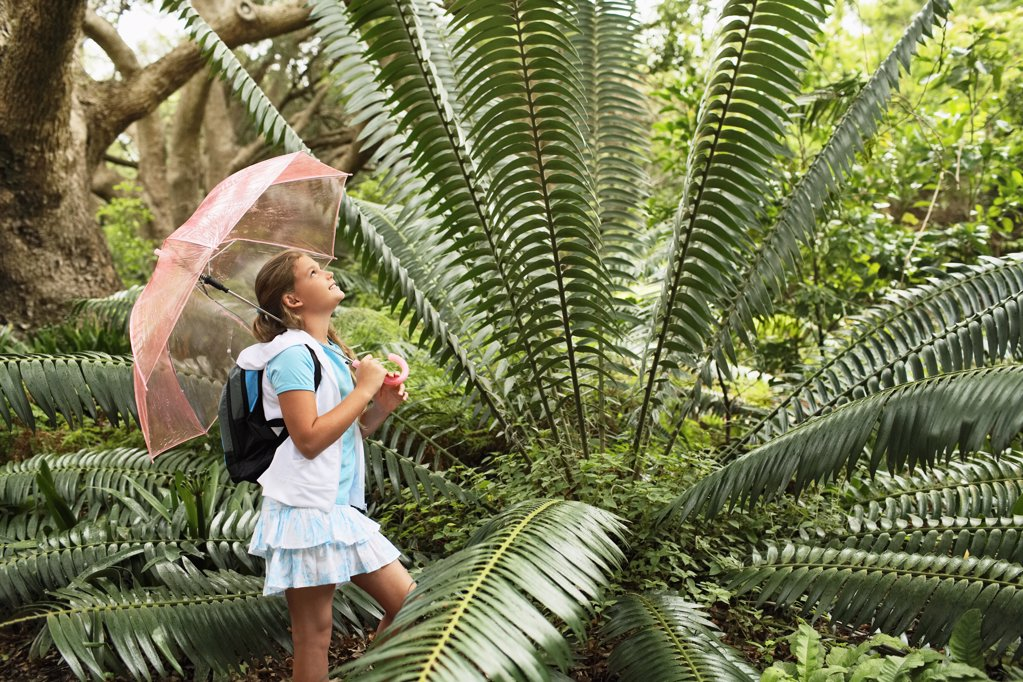 Girl Looking at Large Fern : Stock Photo