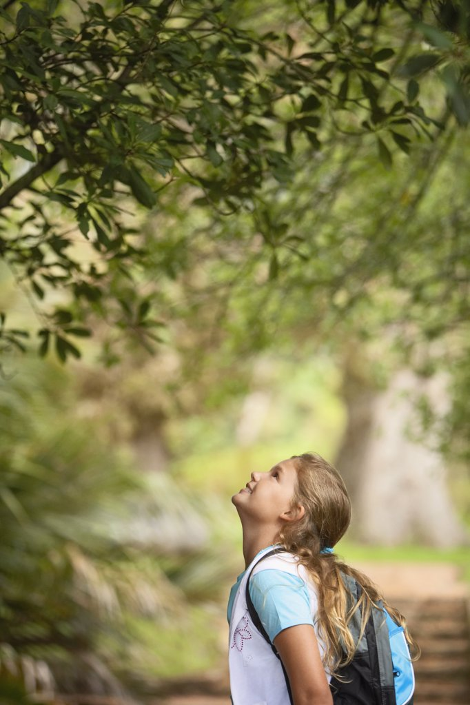 Girl Looking Up at Tree : Stock Photo