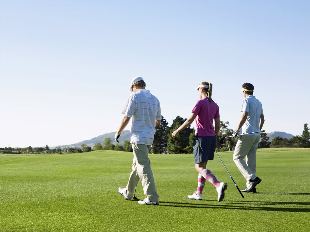 Golfers Walking on Course : Stock Photo