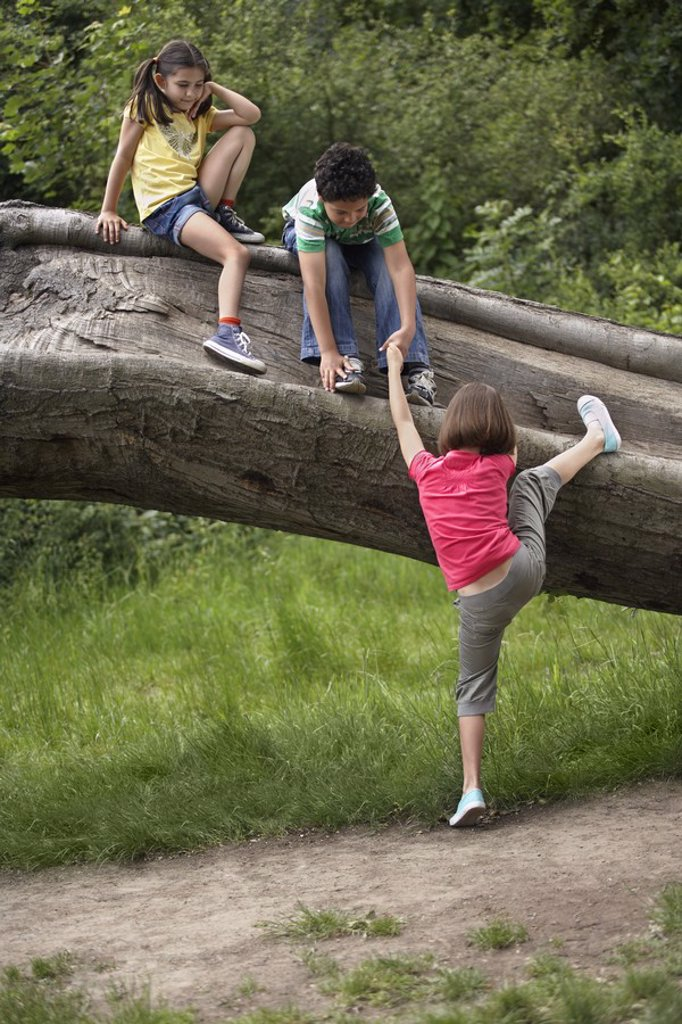 Three friends 7_9 climbing on fallen tree : Stock Photo