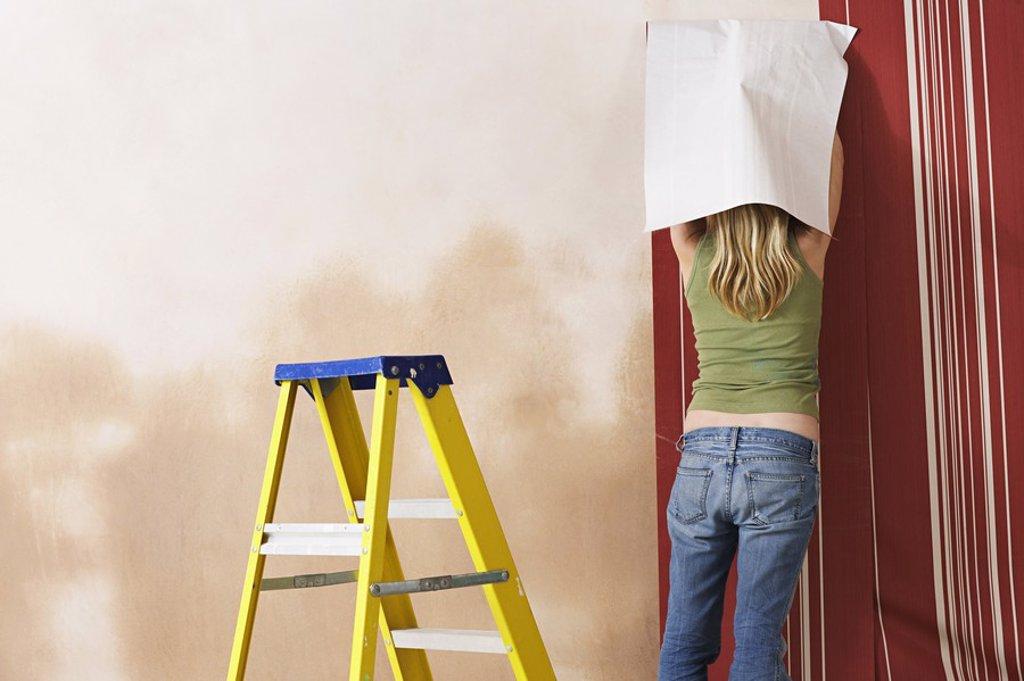 Woman hanging wallpaper back view : Stock Photo